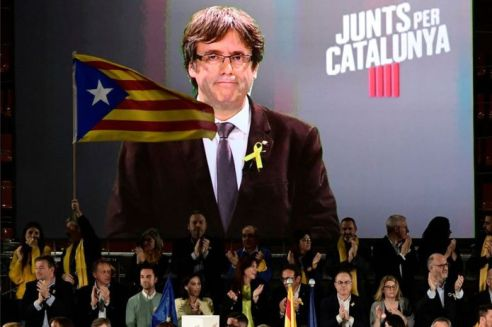 _99326812_catrally15decafp